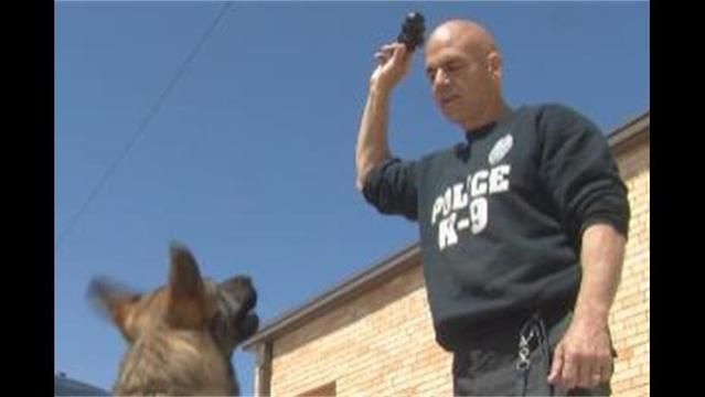 Police K-9 Training: Man's Best Friend Takes on New Role