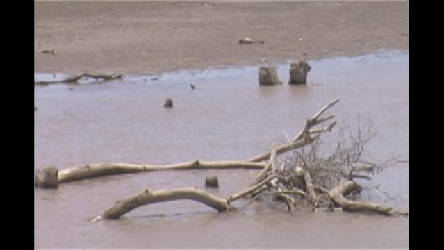 Stage Four Water Restrictions May Be in the Future for Brown County