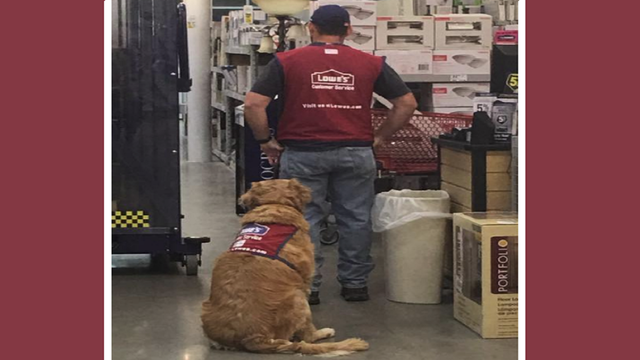 Abilene Lowe's Hires Struggling Veteran and Service Dog