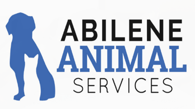 Dogs $20, Cats $10 During Abilene Animal Shelter Sale