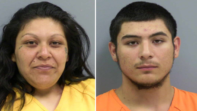 Mother, biological adult son plead no contest to incest