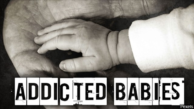 Rise in drug-addicted babies prompts judge's controversial solution