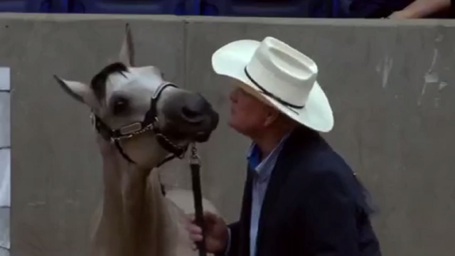 Terry Bradshaw in Amarillo to compete in 2017 AQHA Select World Championship