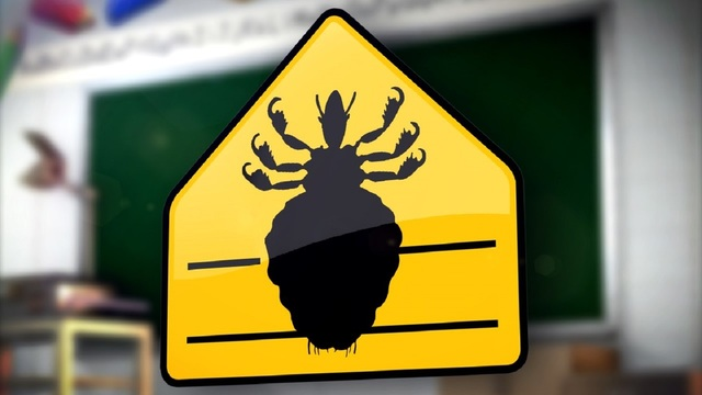 New lice law implemented in Texas schools