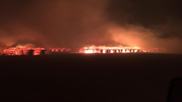 $825,000 worth of cotton destroyed in Roscoe gin fire