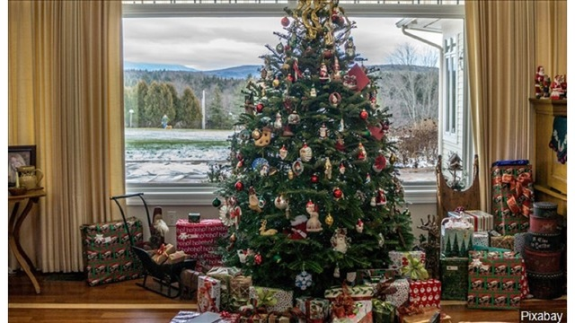 Why Your Christmas Tree May Cost More This Year Ktab And Krbc