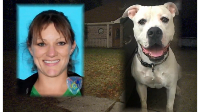 Veterinarian in Harahan accused of killing neighbor's dog due to incessant barking