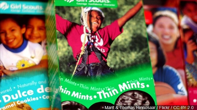 Samoas over Thin Mints? Vote for your favorite Girl Scout cookie now