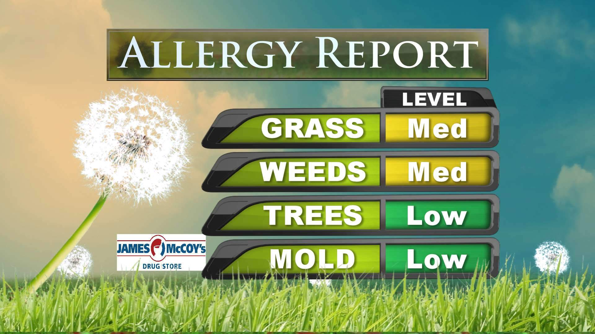 Allergy Report