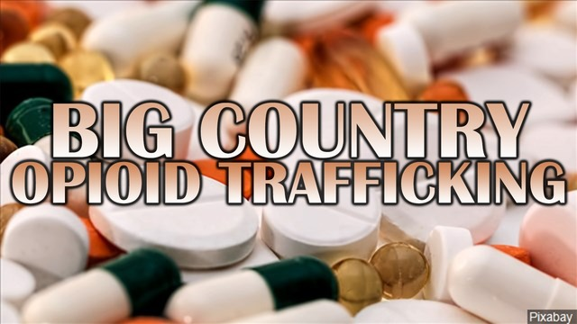 9 arrested during opioid trafficking investigation in Nolan, Mitchell Counties