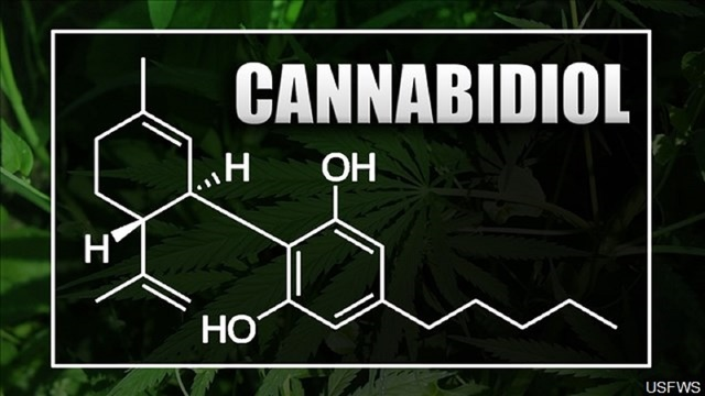 Abilene police warn businesses to stop selling CBD products - one store already raided