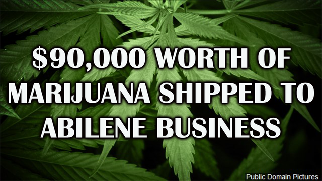 $90,000 worth of  'Hydroponic Marijuana' shipped to south Abilene business