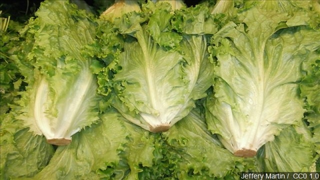 It's safe to eat romaine lettuce, CDC says